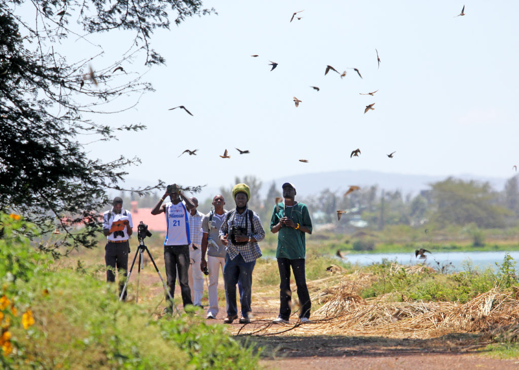 A team of volunteers in the past WaterBird counts