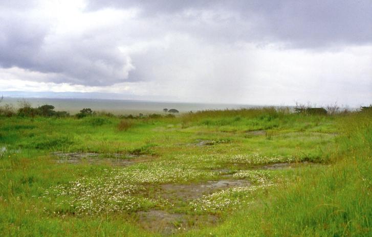 biodiversity-parks