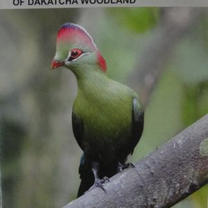 checklist-birds-of-dakacha