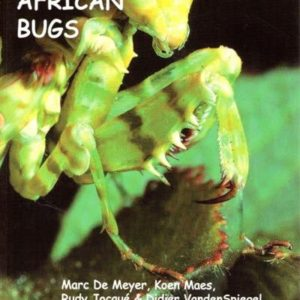 east-african-bugs