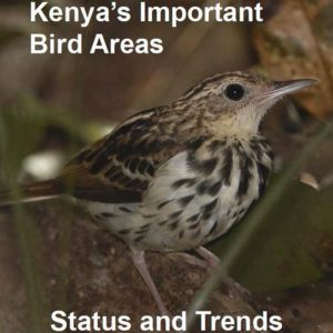 ibas-of-kenya-status-and-trends
