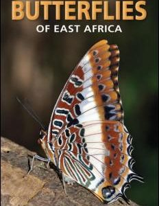 pocket-guide-butterflies-of-east-africa