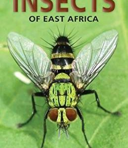 pocket-guide-to-insects-of-east-africa-by-dr-dino-j-martins