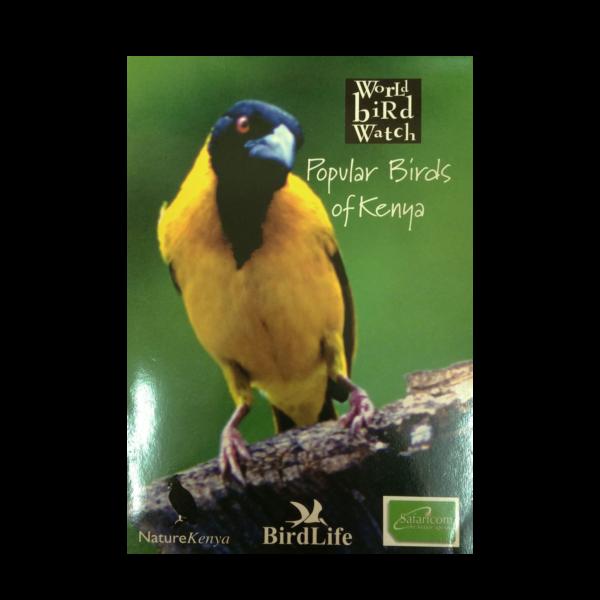 Popular Birds of Kenya