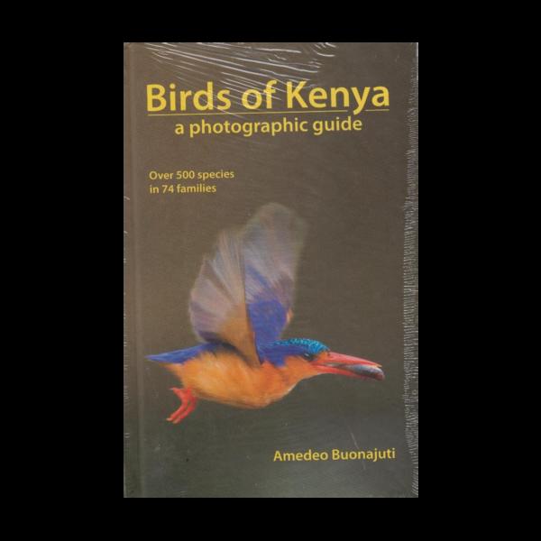 birds of Kenya photographic