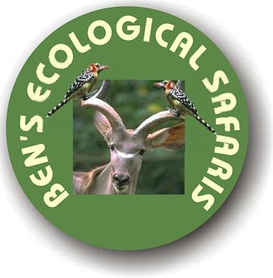 benecological