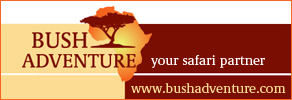 rtemagicc_bush_adventure_banner_2_-_100_rand_01_jpg