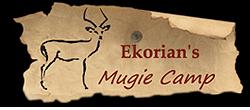 ekorian_logo