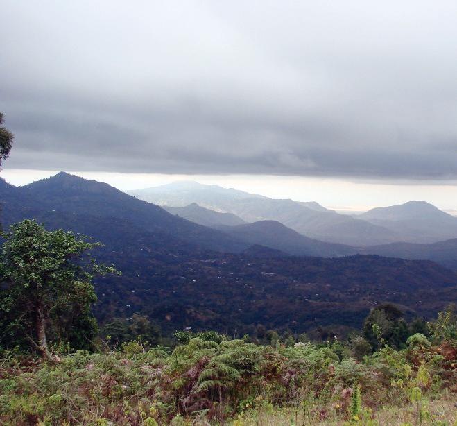 TaitaHills_landscape