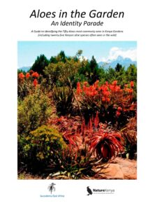1. Aloes in the Garden - An Identity Parade - cover page